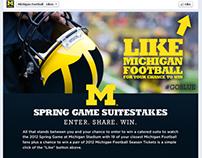 Social Media: U-M Football Facebook Campaign