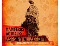 Sist. de alta Complejidad - Museo Arg. de Cs. Naturales