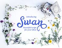 Swan font