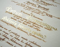 Calligraphy Diploma honoris causa for Peter Greenaway