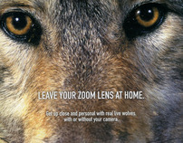 International Wolf Center (print, direct, posters)