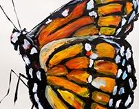 Paintings & Drawings - Survey of Work