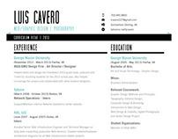 Resume / CV 2013