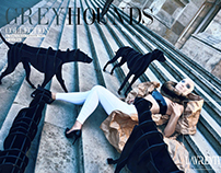 GREYHOUNDS Collection ®