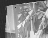 Sheet Film Experiments#1