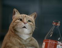 YOKI - CAT