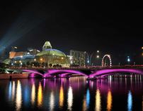 Esplanade  Singapore Nov 2010