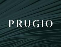 Prugio Brand & Strategy Renewal