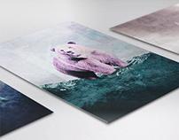 Collezione Image // Buffetti // estratto book