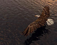 3d Eagle