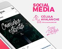 Social Media | Célula Avalanche