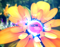 FUSE - New Music Videos ID