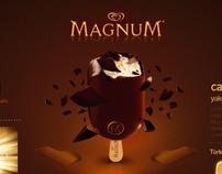 Magnum.com.tr Web Project