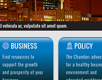 Nashville Area Chamber of Commerce website re-design