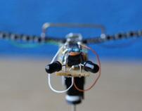 Solar Powered Robotic Head
