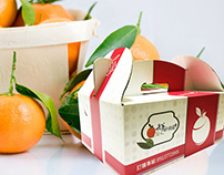 2018 台東老爹釋迦 Fruit Packaging Design