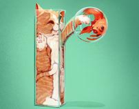 Cats r liquid