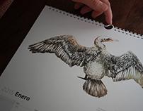 Calendario Fauna Patagónica