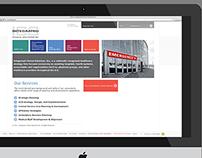 Capabilities Website for Healthcare Consultants