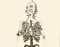 The Human Body - El Cuerpo Humano