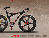 Specialized Canon Team Bike