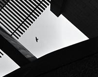 متحف الملك عبدالعزيز - تصوير جوال - iphoneography
