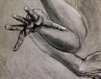 Hand Motion Study