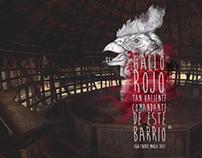 Gallo Rojo - Isla Fuerte