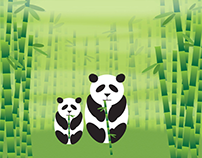 Pandas | Vector Illustration