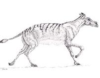 Pre-historic mammals