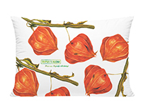 Physalis watercolor prints for the farm