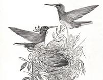 Bird 06