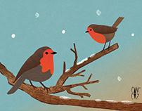 Robins - vector