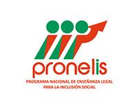 Diseño de marca y afiches - Pronelis