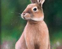 Wildlife and Pet Oil Paintings