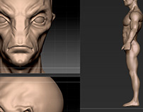 3d ZBrush models exercises
