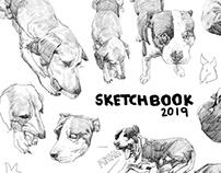 Sketchbook 2019