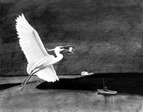 The egret and the fisherman