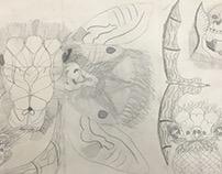 Ernst Haeckel Inspired Series Illustrations - Gr. 6 KMS