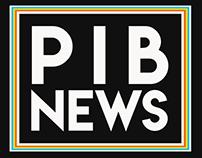 Pib News Logo Opener