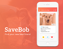 SaveBob App - Interface Design and User Experience