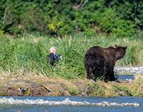Alaska, Grizzly bears #2