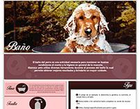 Re diseño página web