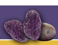 Potato Lab