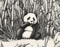 2018: Panda