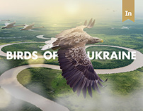 Birds of Ukraine