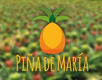 Piña de María. marca