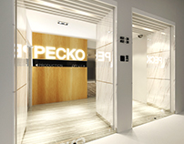 Office Design for Pecko Electronic Indsutrial Pte Ltd