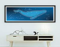 Ballena en el Cielo - Whale in the sky