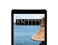 Entity Magazine